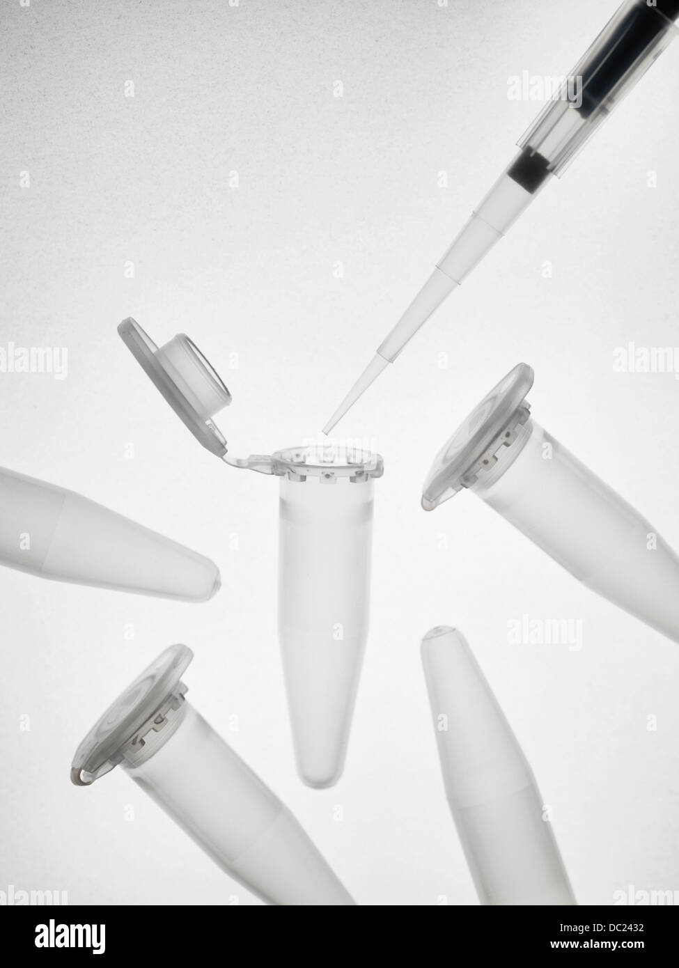 Pipette and eppendorf vials - Stock Image