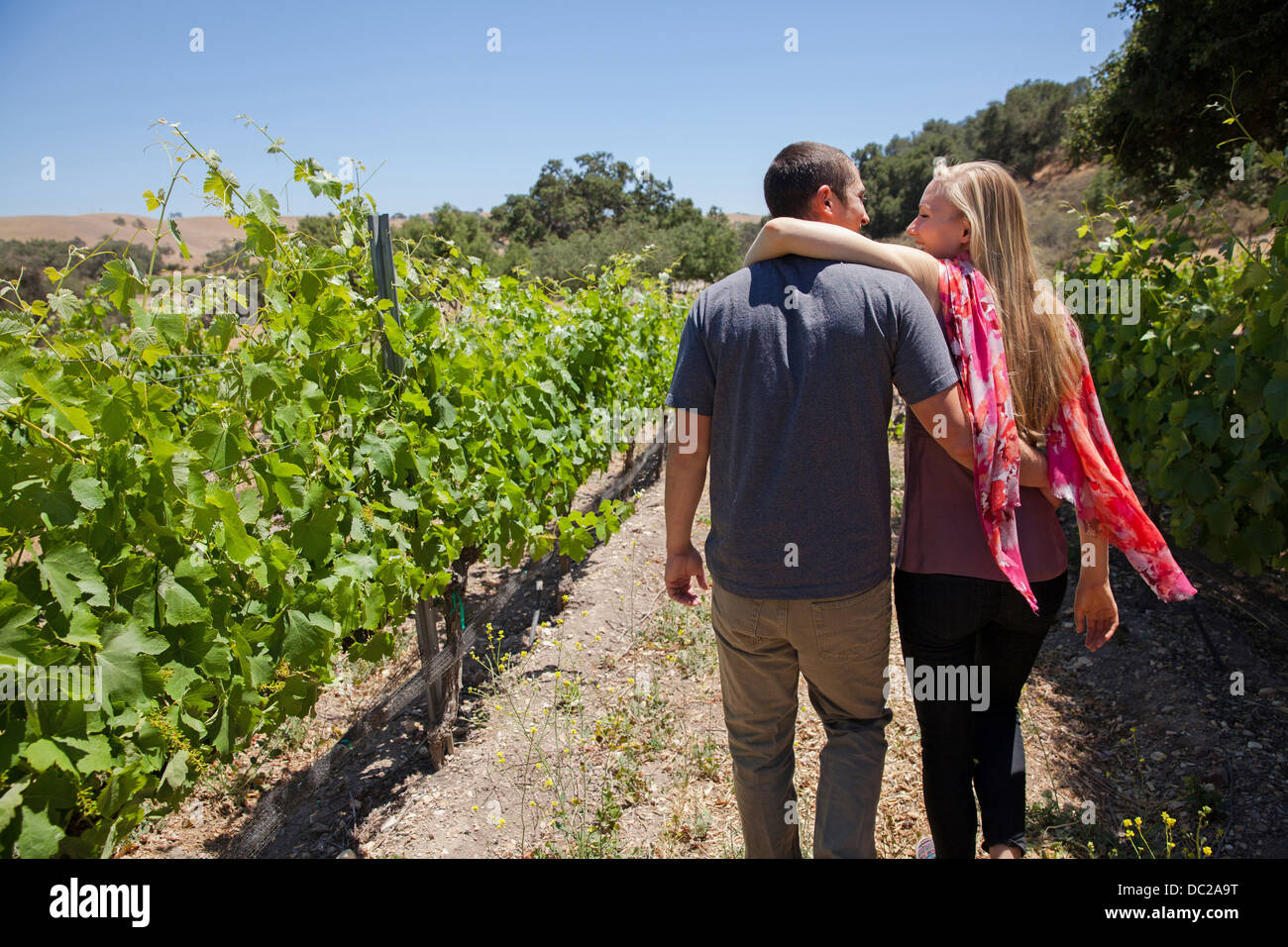 Young couple on path in vineyard, woman with arm around man - Stock Image