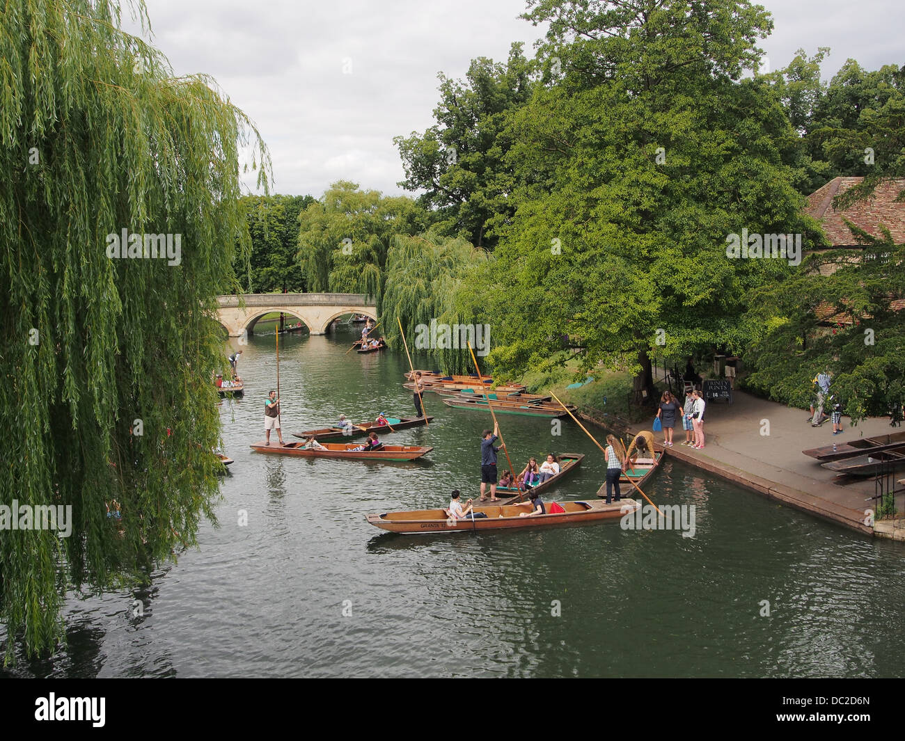 Cambridge University punting on the river Cam - Stock Image