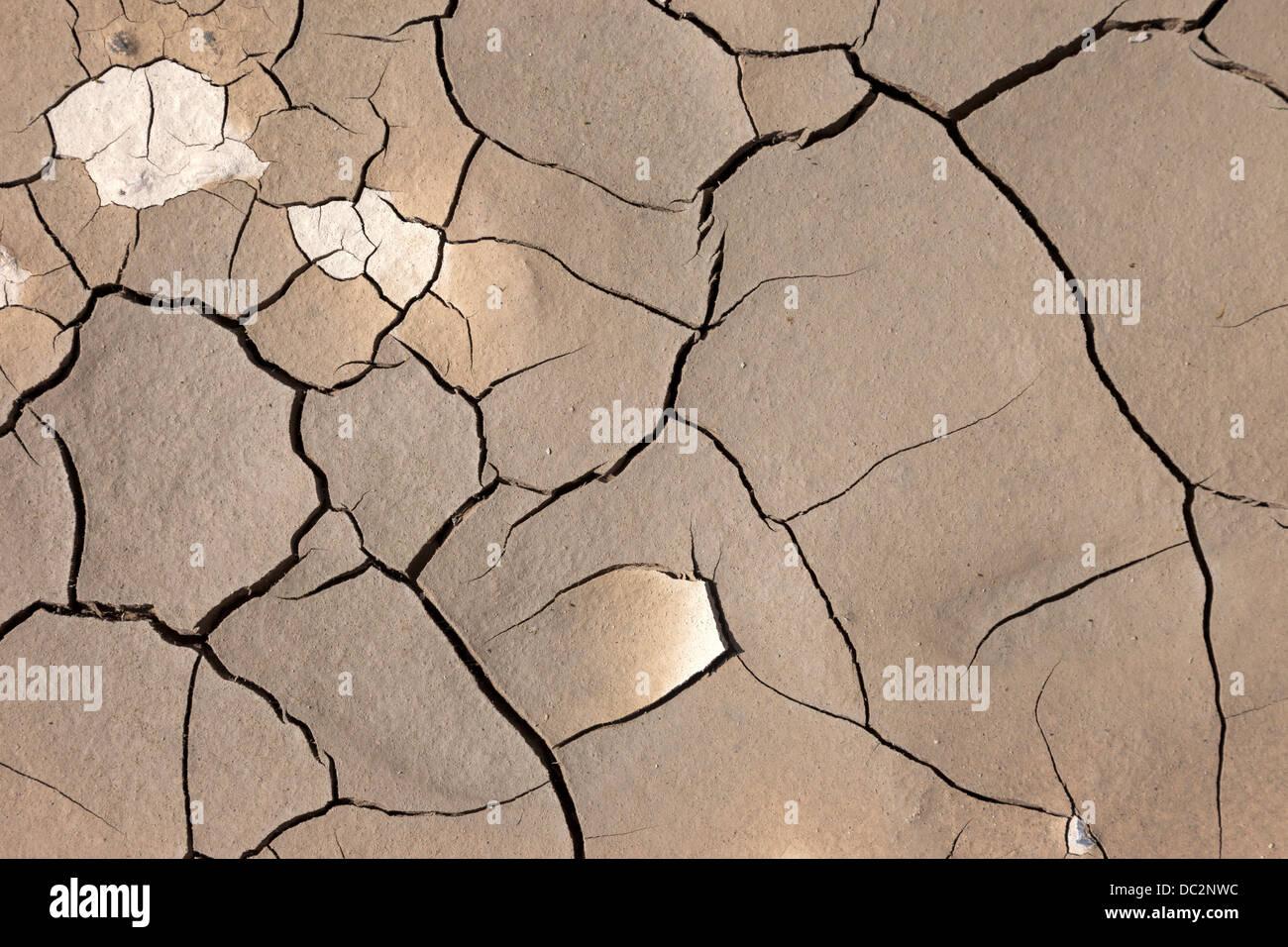 Cracked Mud Pattern - Stock Image