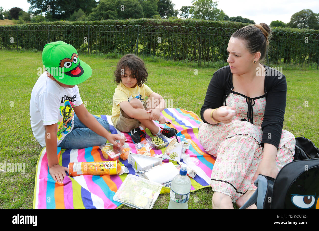 Single parent and her two sons having a picnic in the park - Stock Image