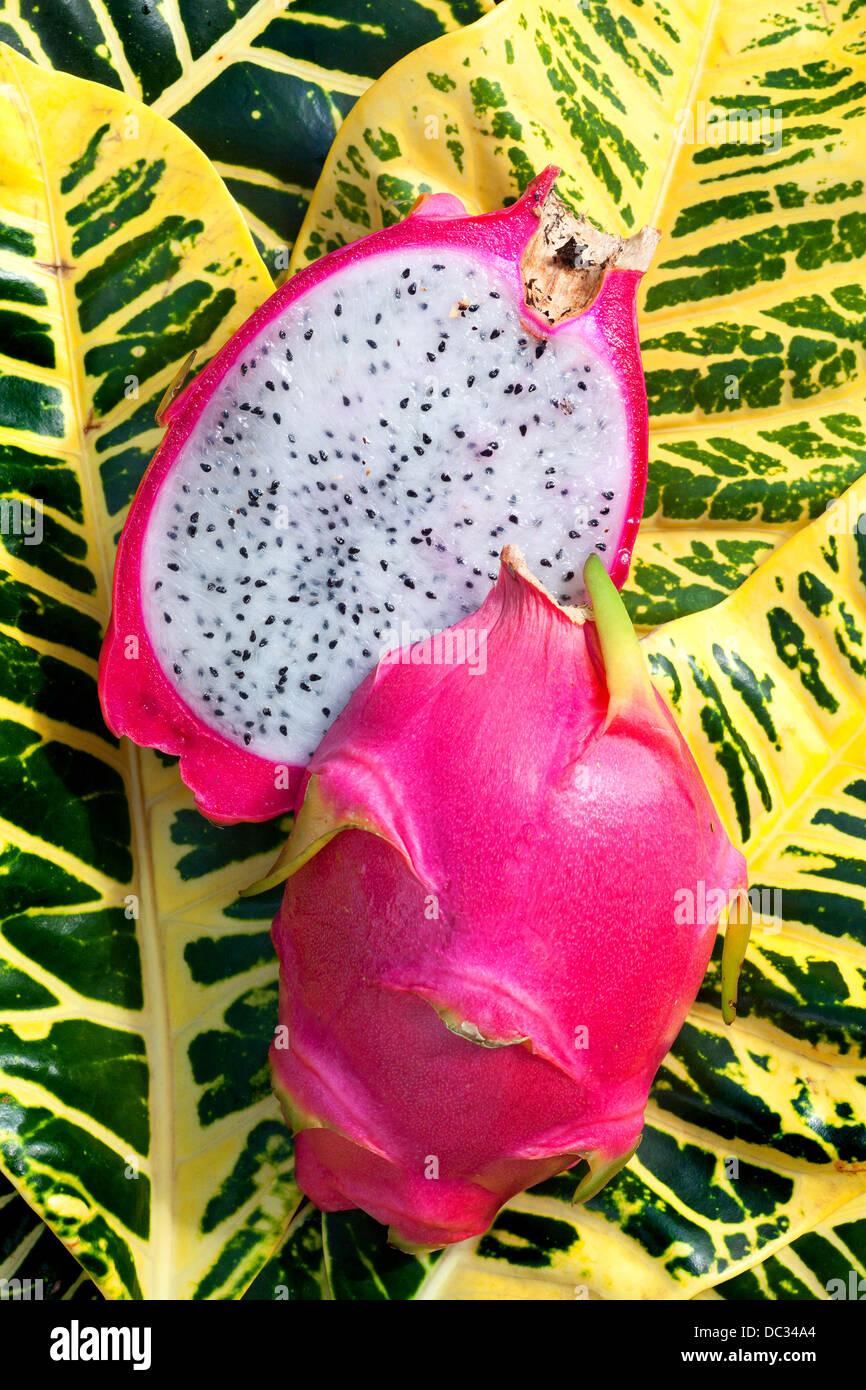 Dragon Fruit or Pitaya - Stock Image