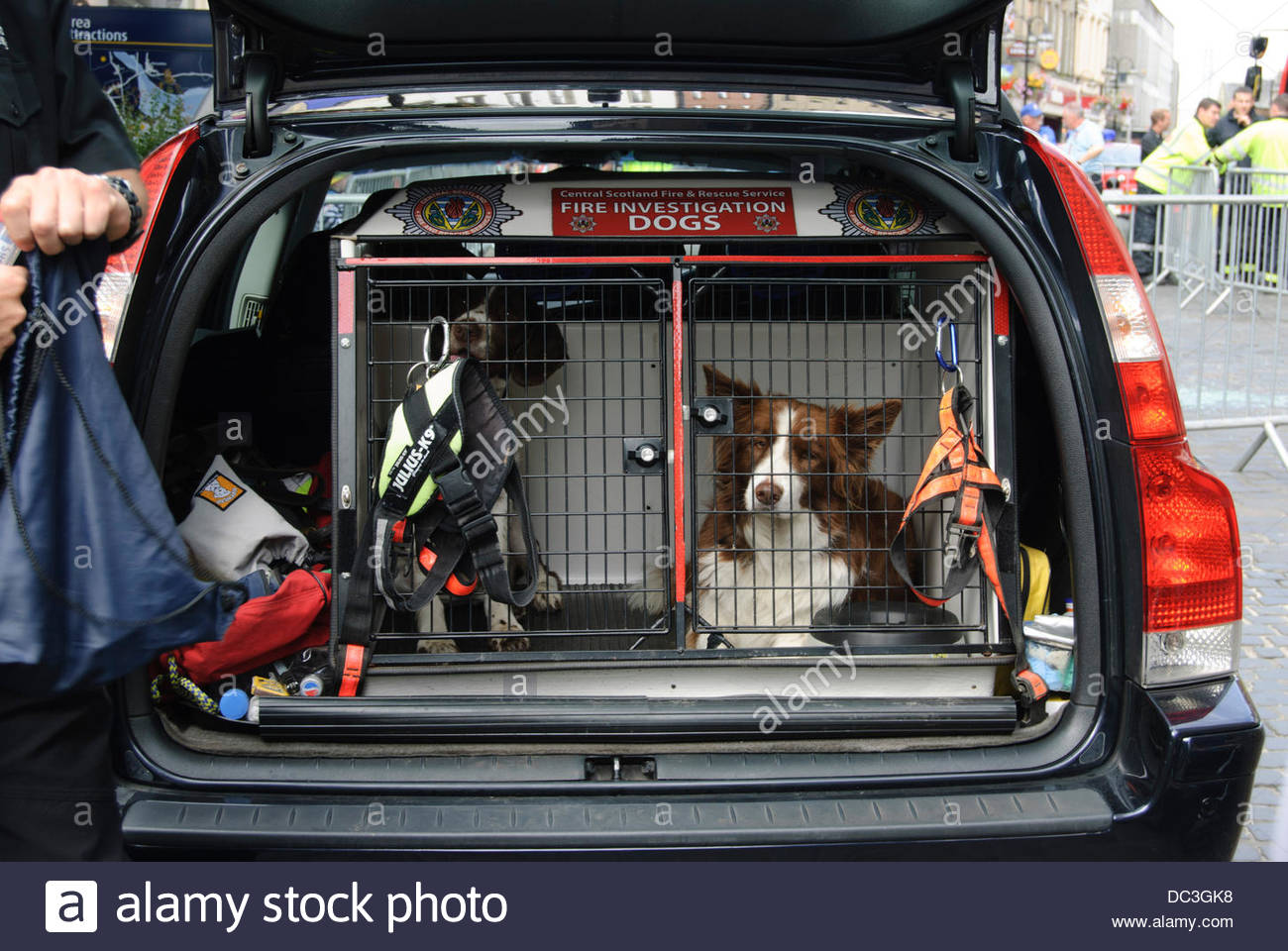 Falkirk, UK on Thursday, August 8, 2013. Fire Investigation Dogs. The Scottish Fire and Rescue Service are taking - Stock Image