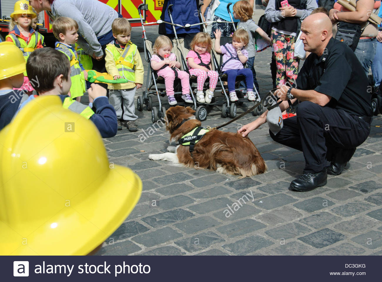 Falkirk, UK on Thursday, August 8, 2013. Fire Investigation dog Jay introduced to some children before a demonstration - Stock Image