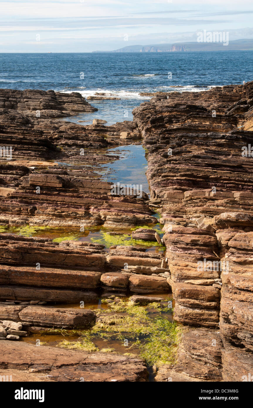 Hoy (Orkney) over the Pentland Firth from near village of Mey, Caithness, Scotland, UK.  Caithness sandstone in - Stock Image