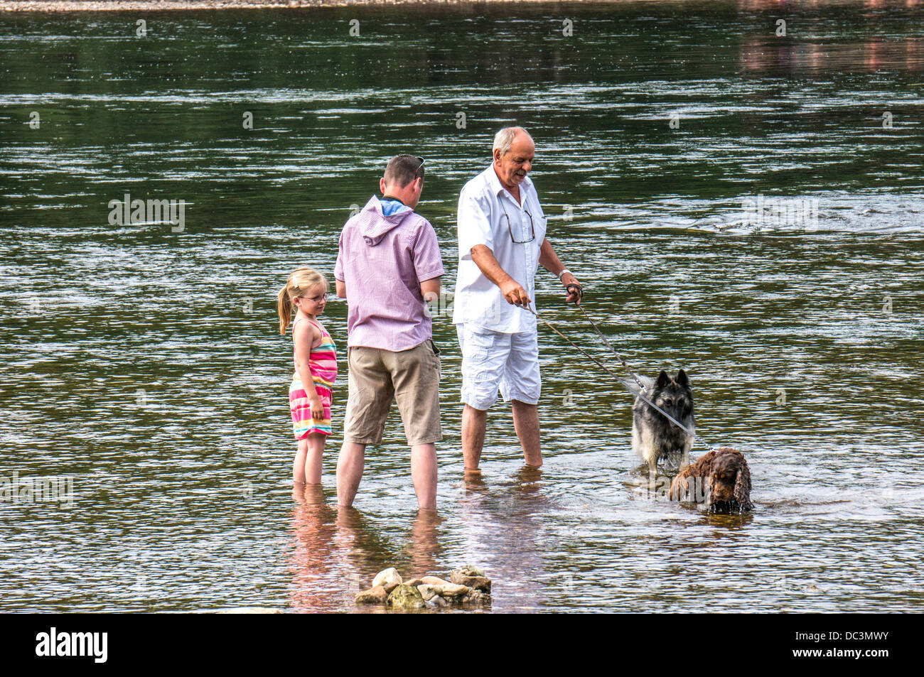 A family and two dogs in the shallow water of the river in Limeuil, where the Dordogne and Vézère rivers - Stock Image