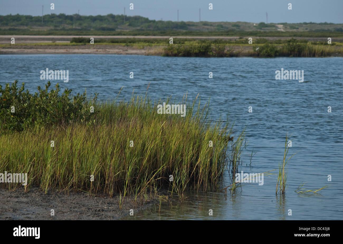 Aug. 7, 2013 - Aransas Pass, Texas, USA - August 7, 2013 Aransas Pass, Tx. USA. The salt marshes off the intra-coastal - Stock Image