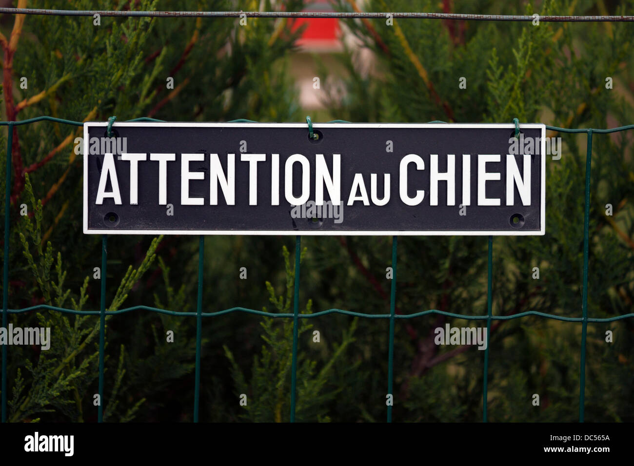 Attention au Chien sign - Stock Image