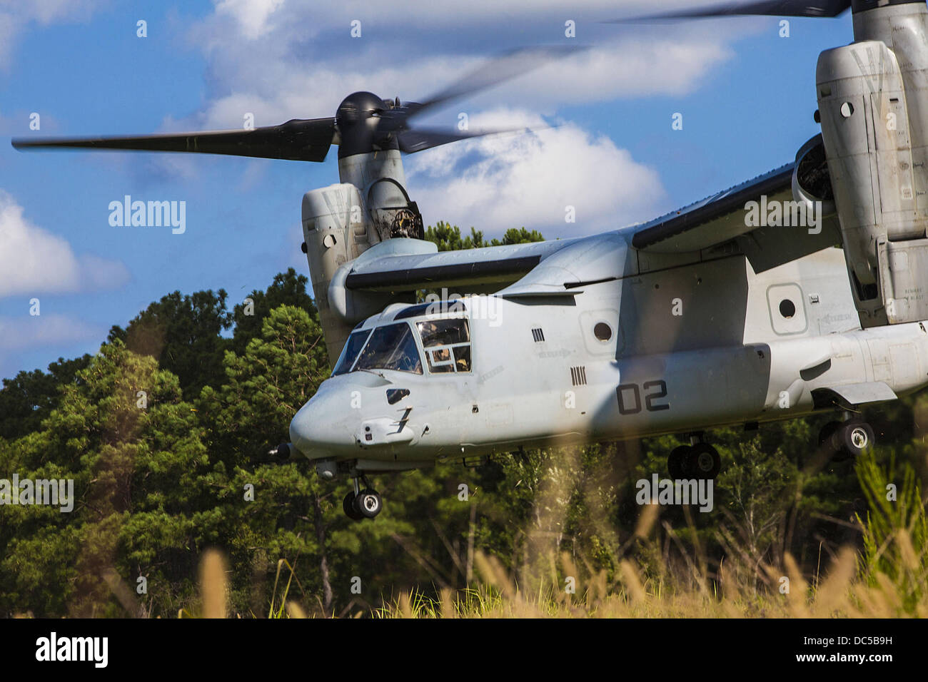 A US Marine Corp MV-22 Osprey aircraft lands in a field during a mass casualty evacuation exercise August 7, 2013 - Stock Image