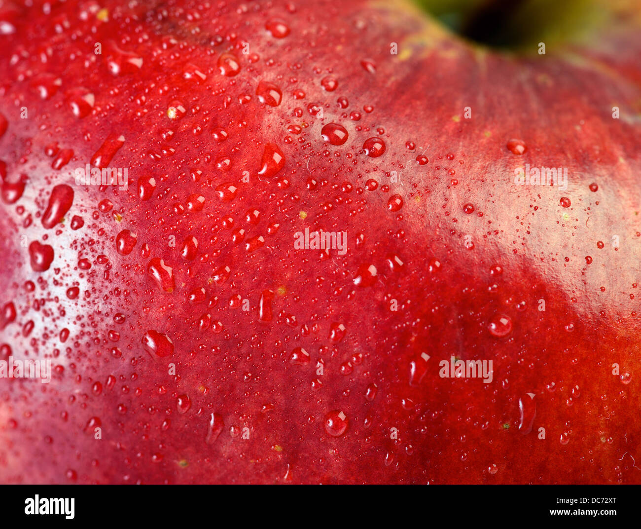 red apple macro with water drops for backdrops stock photo 59162960
