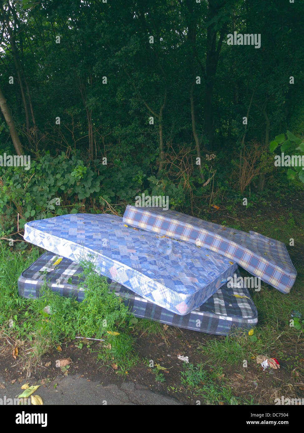 Pile of Dumped Mattresses, UK - Stock Image