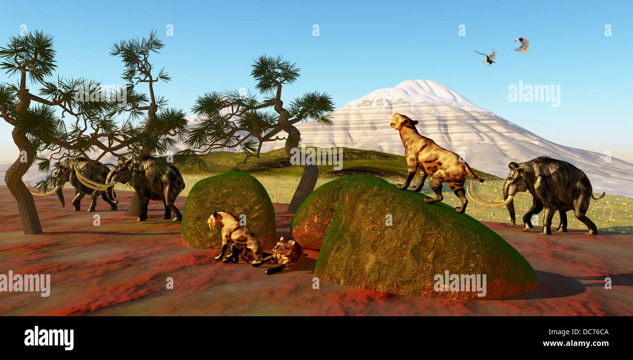 A family of Saber Toothed Tigers watch as a herd of Woolly Mammoths pass by their den. Stock Photo
