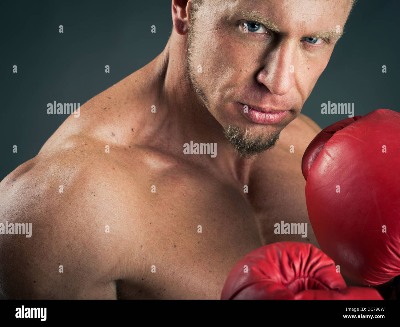 Muscular heavyweight boxer with red boxing gloves - Stock Image