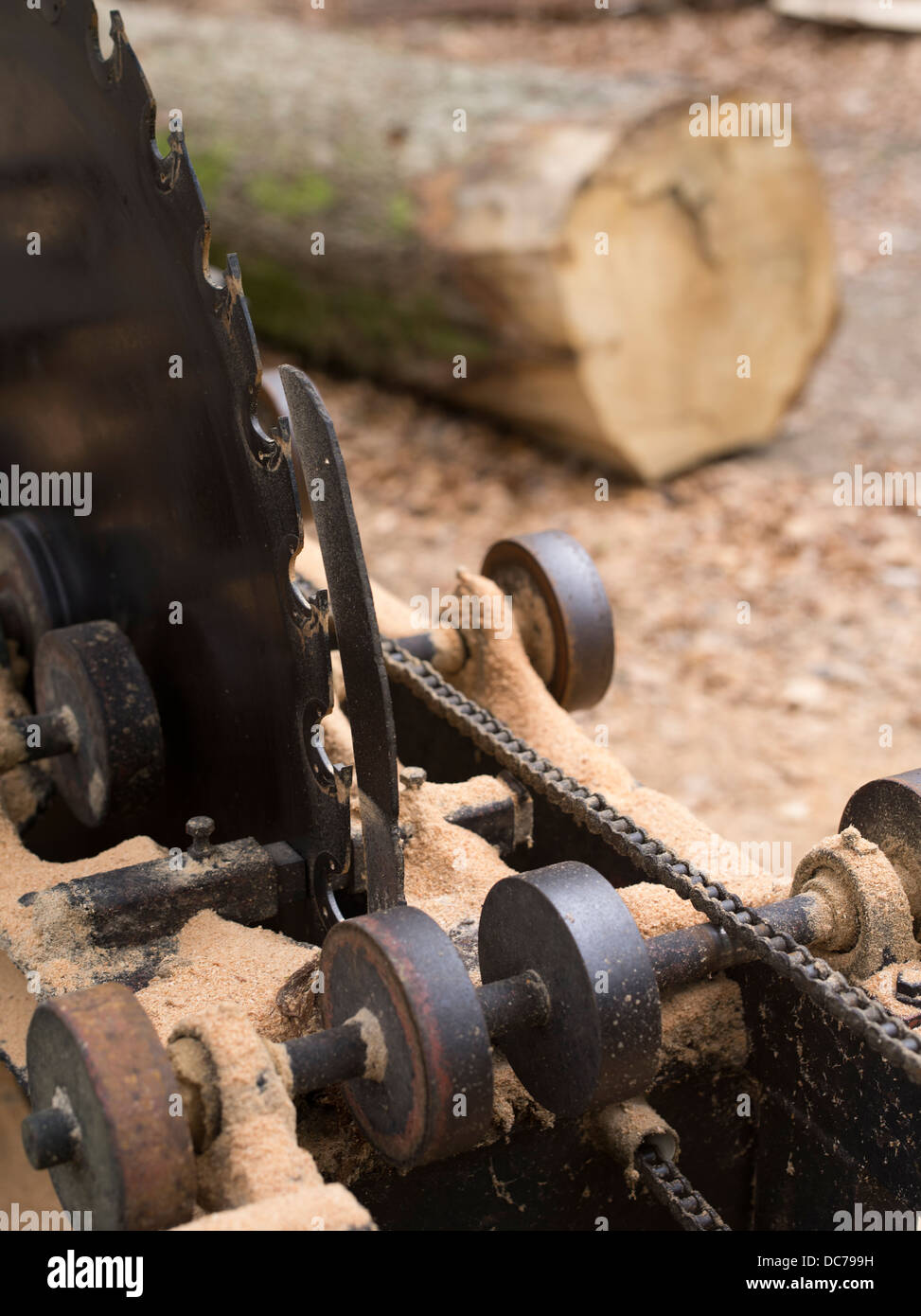 Wood saw blade with log, Lake District National Park, Cumbria Stock Photo