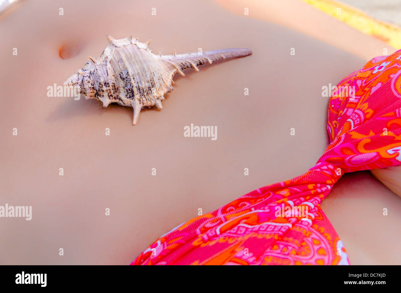 Seashell on the bare belly of a young woman wearing a bikini, close up view - Stock Image