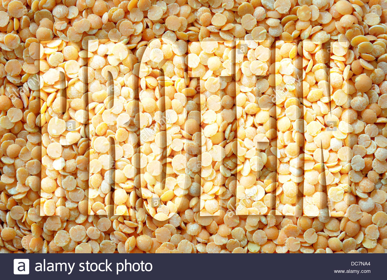Digital composite. Orange split lentils - protein - Stock Image