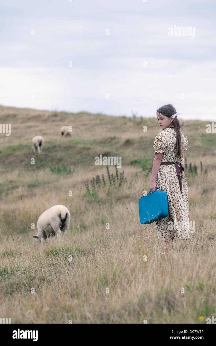 a girl in a vintage dress on a meadow with sheeps - Stock Image