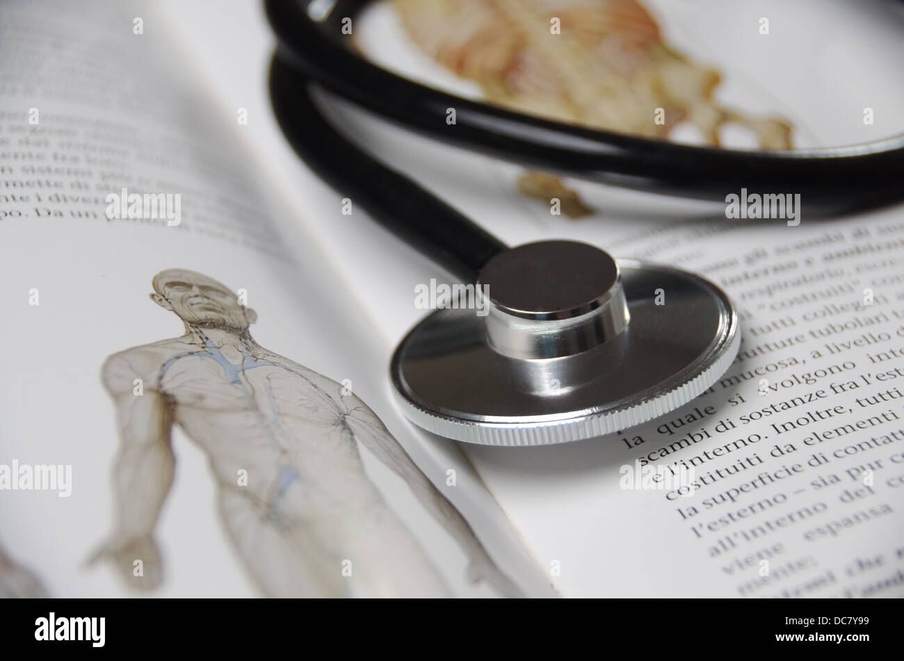detail of Stethoscope on anatomy book Stock Photo: 59182069 - Alamy