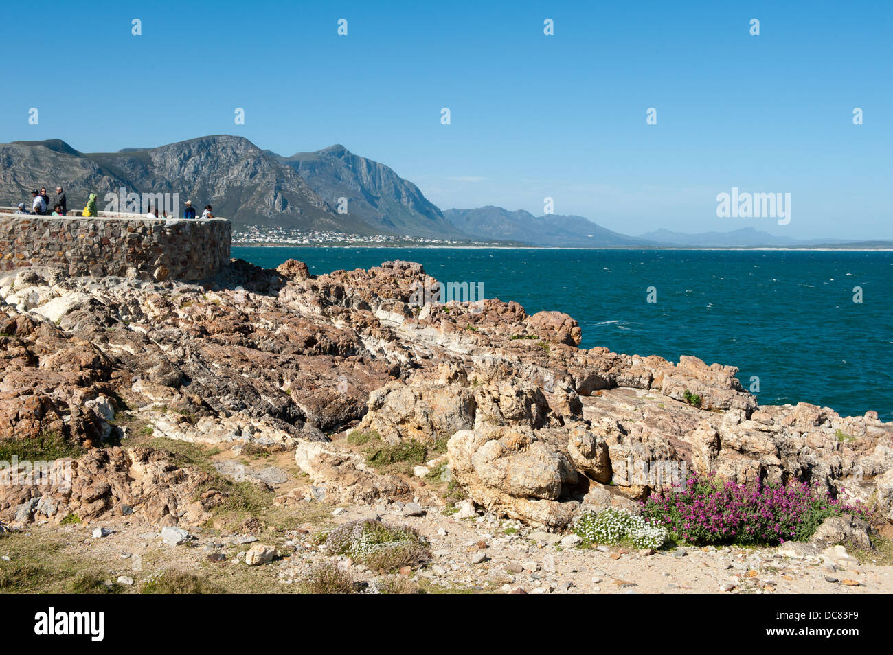 People at the whale watching viewpoint at the old harbour, Hermanus, Western Cape, South Africa - Stock Image