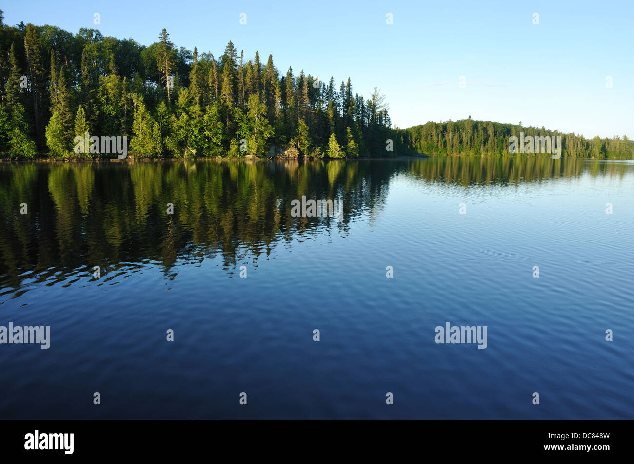 Lake and forest in Boundary Waters Canoe Area Wilderness, Superior National Forest, Minnesota, USA - Stock Image