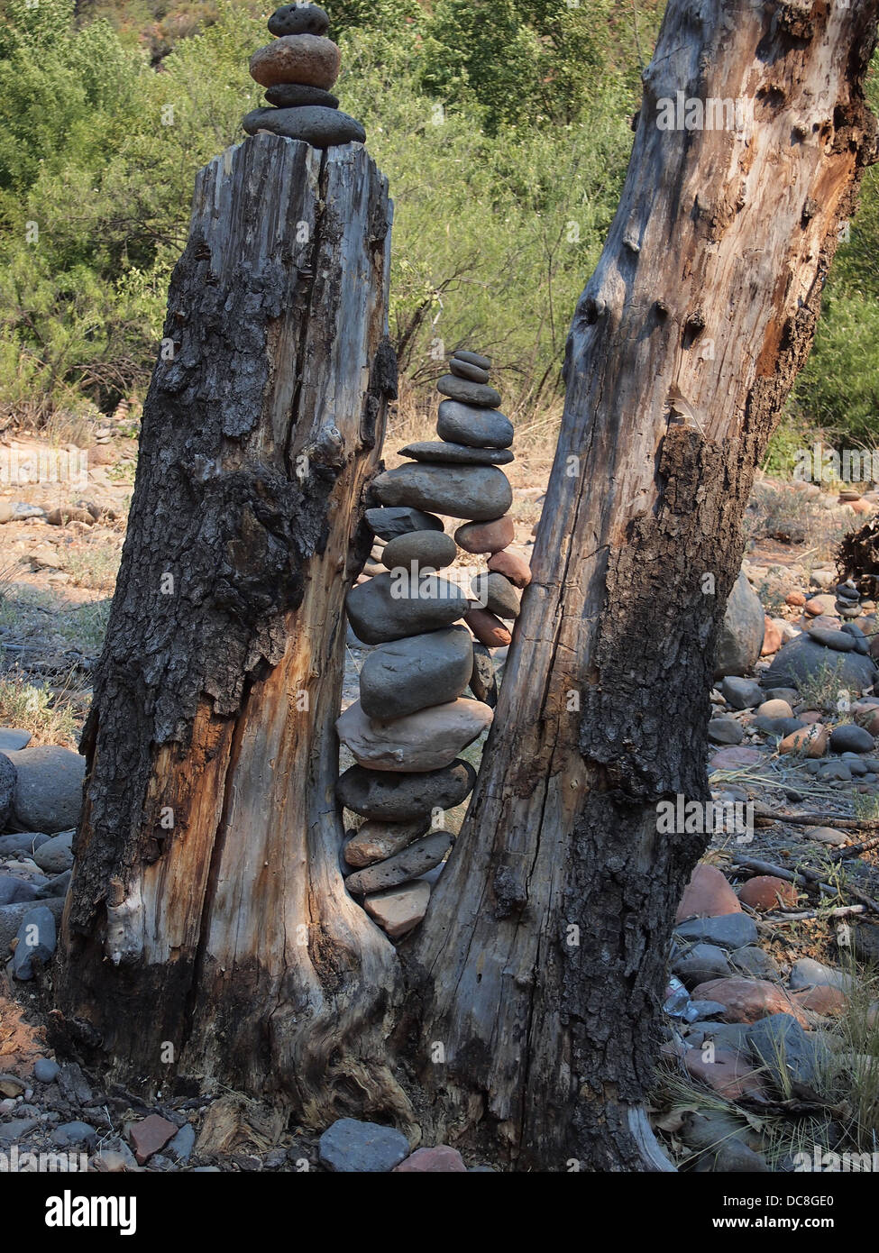 Stone stack wedged between tree trunks on the trail to Cathedral Rock, a magnetic (female) energy vortex, Sedona, - Stock Image