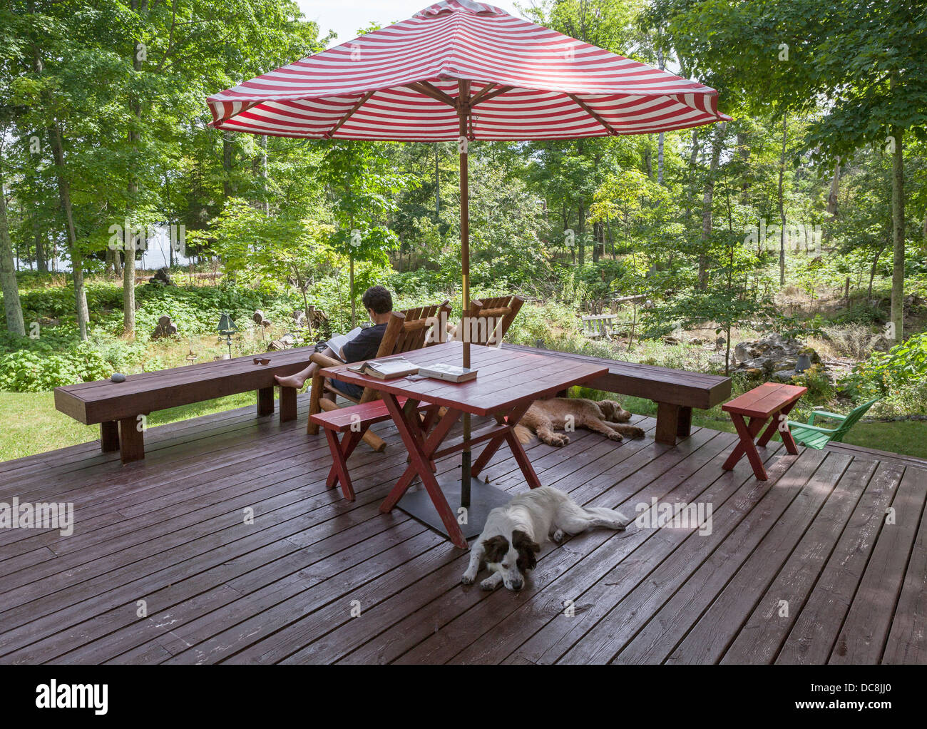 A woman and 2 dogs relax while on vacation on Washington Island, Wisconsin. - Stock Image