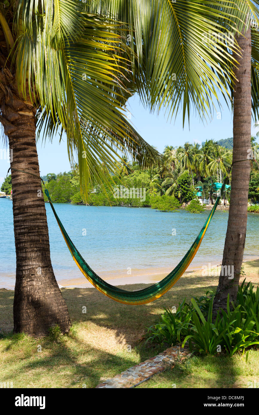 Hammock Hanging From Palm Trees On A Tropical Beach Stock Photo