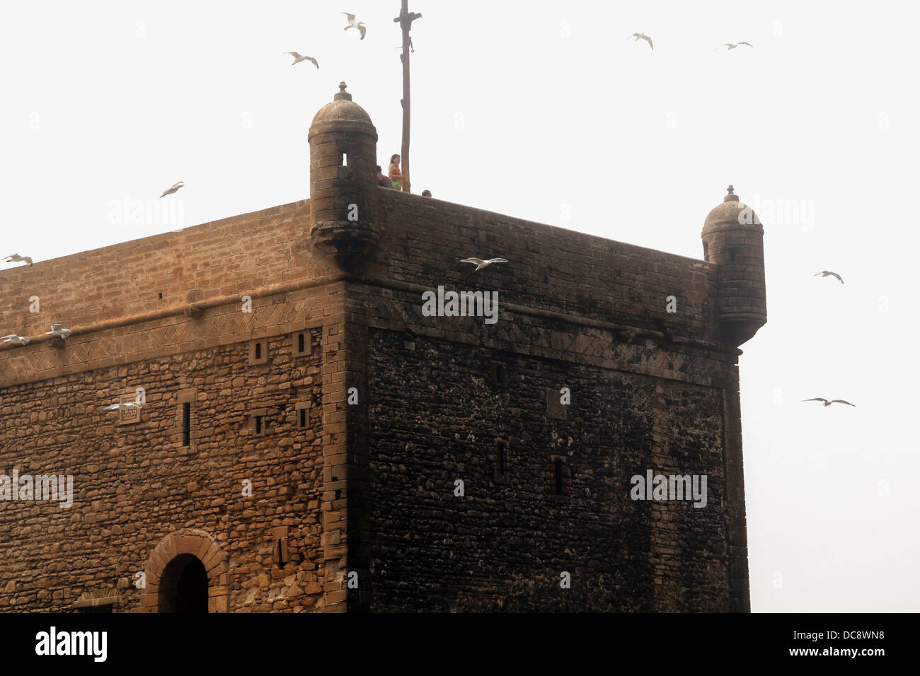 fortress tower in essaouria, morocco with seagulls in storm Stock Photo