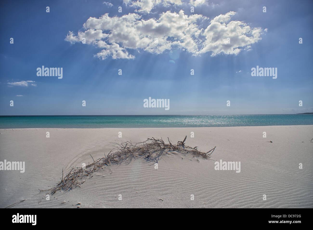 La Cinta Beach close to San Teodoro, Sardinia - Stock Image