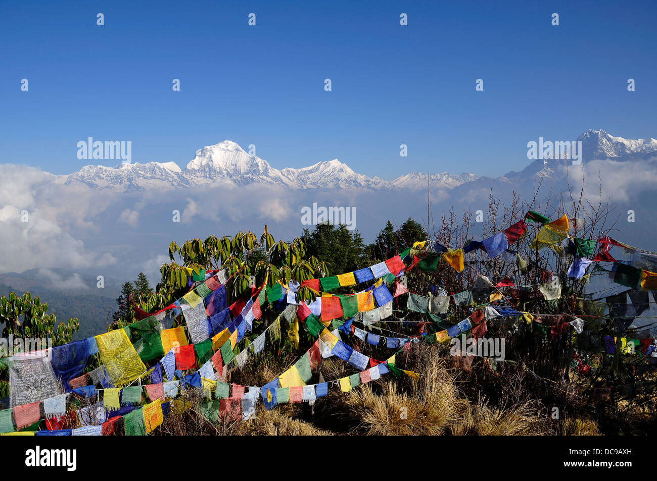 Annapurna Mountain Range View and Praying Flags With Blue Sky, Nepal. - Stock Image