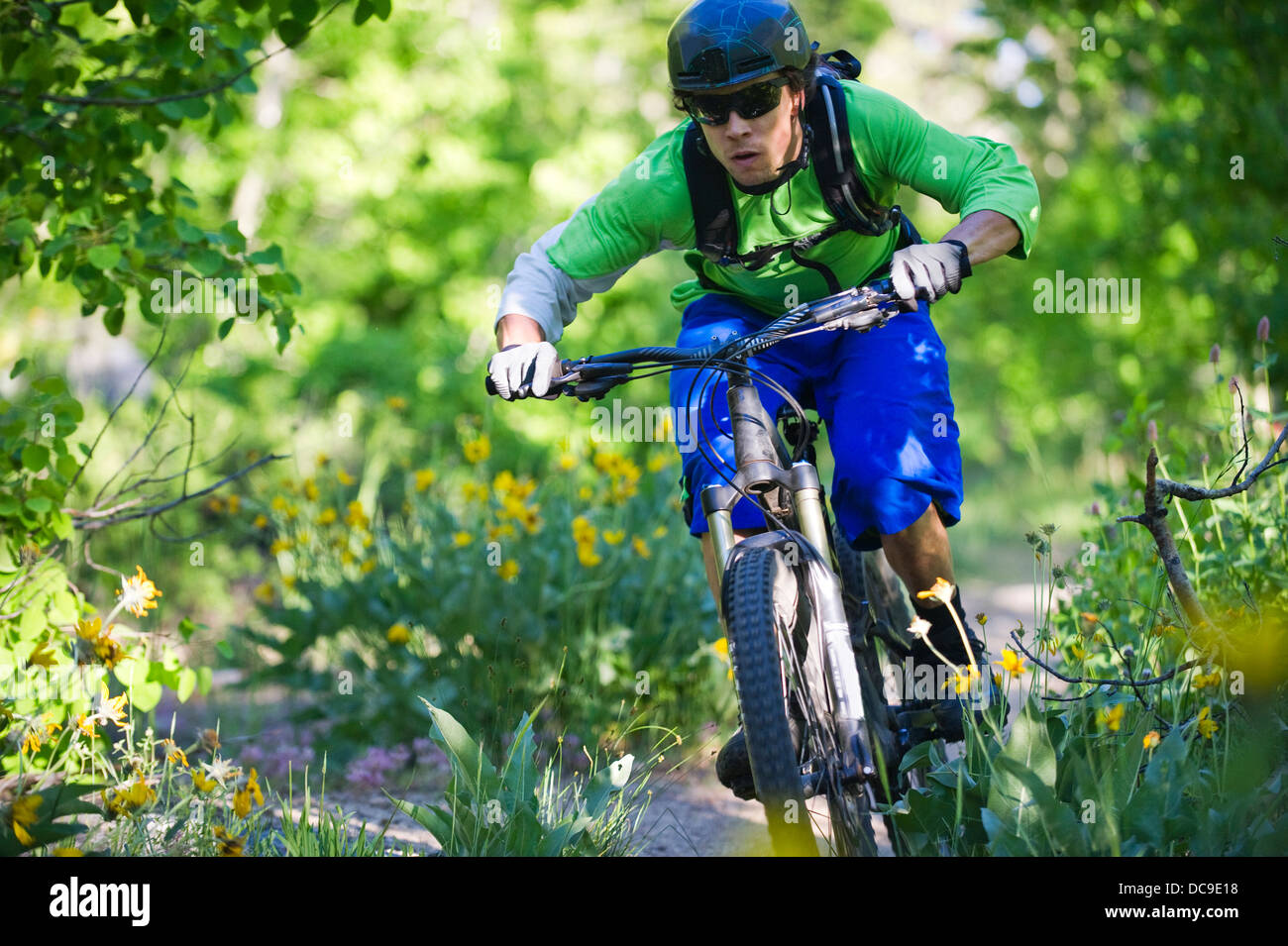 A man, mountain biking on the Scott's Lake trail in South Lake Tahoe, CA. - Stock Image