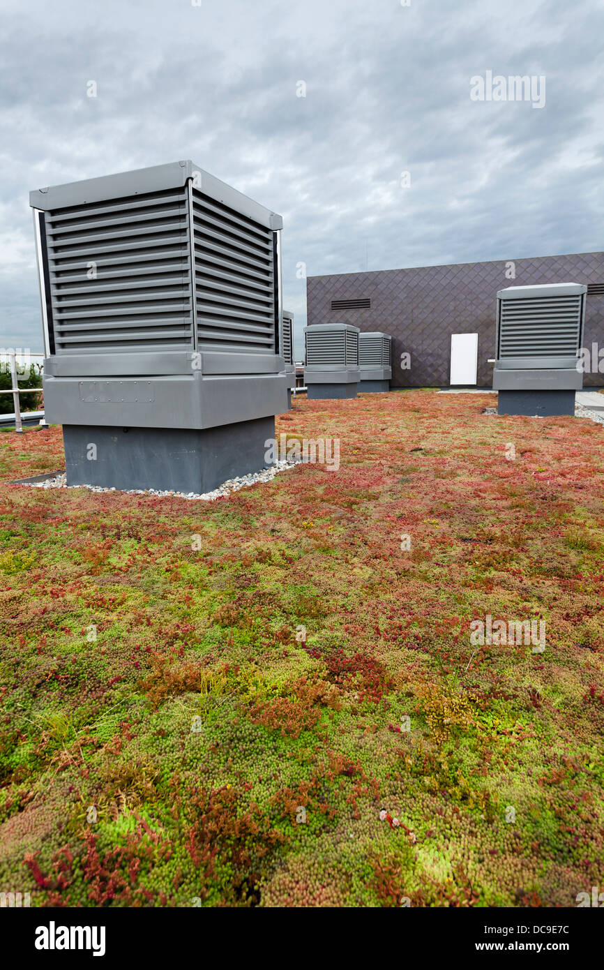 monodraft louver ventilation and Sedum green roof on Notting Hill Ealing High School - Stock Image
