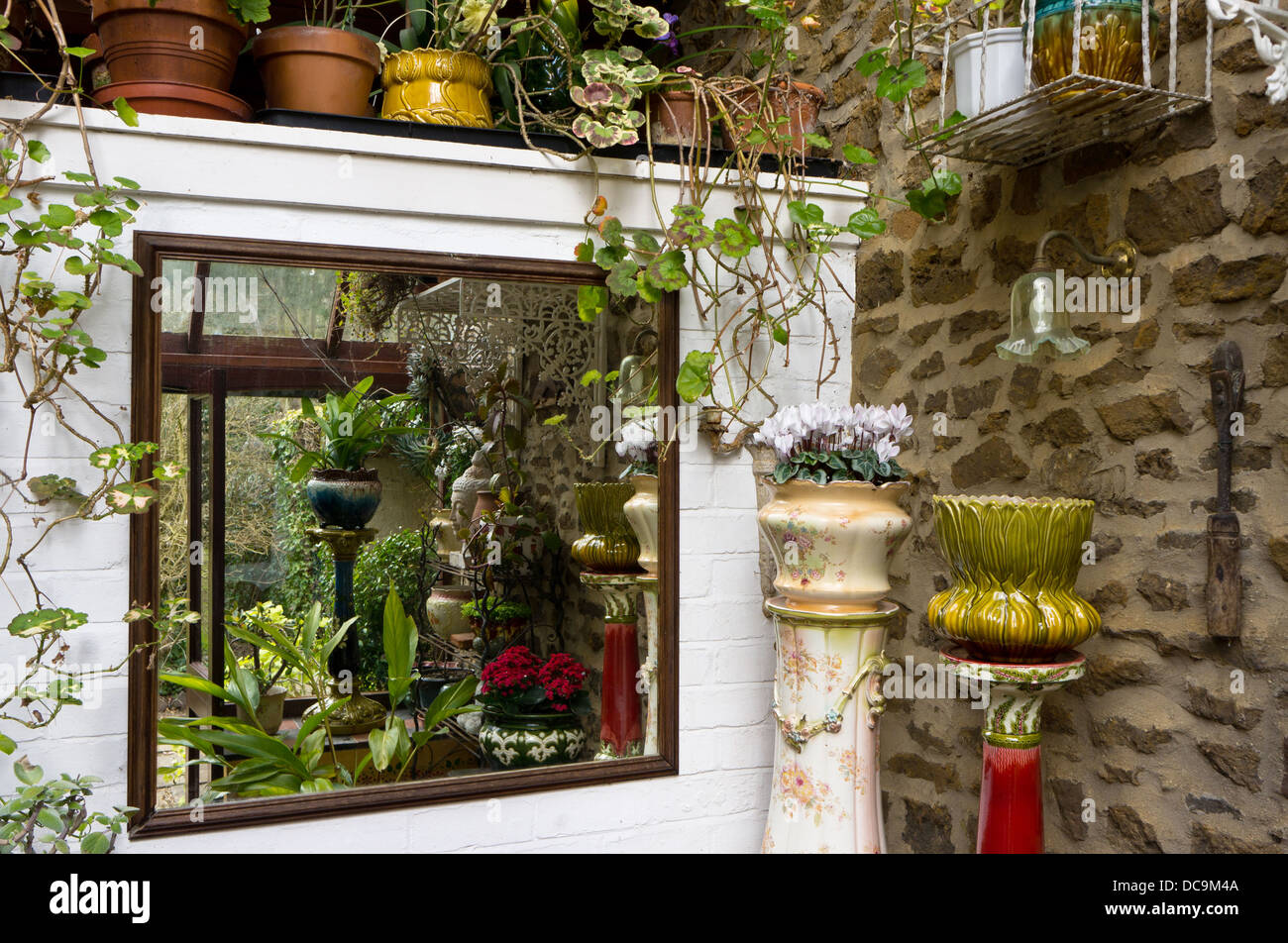 Large square mirror in a UK lean-to conservatory reflecting an arrangement of potted plants and shrubs - Stock Image