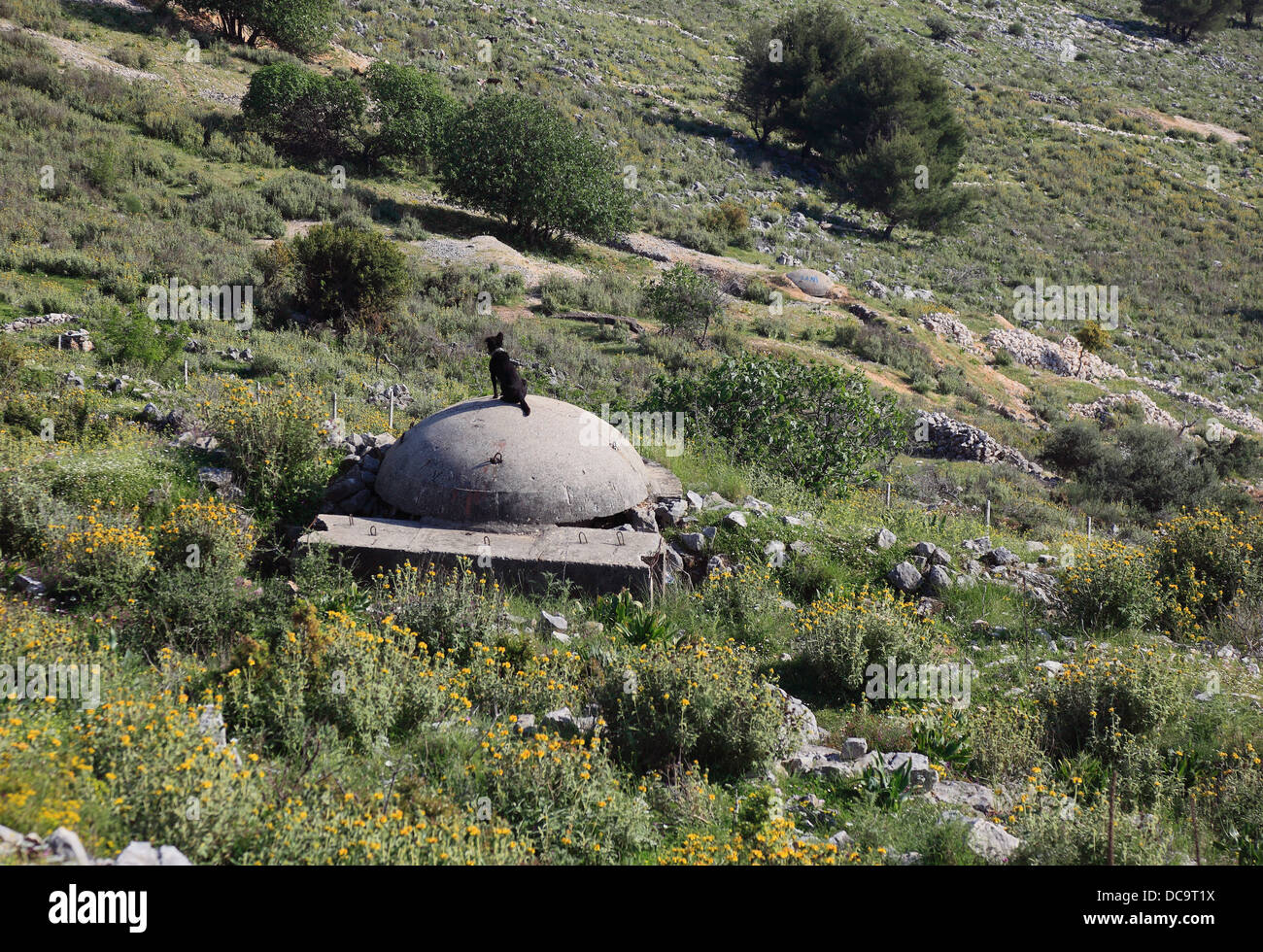 A bunker built in the area of Enver Hoxha, near Berat, Albania - Stock Image
