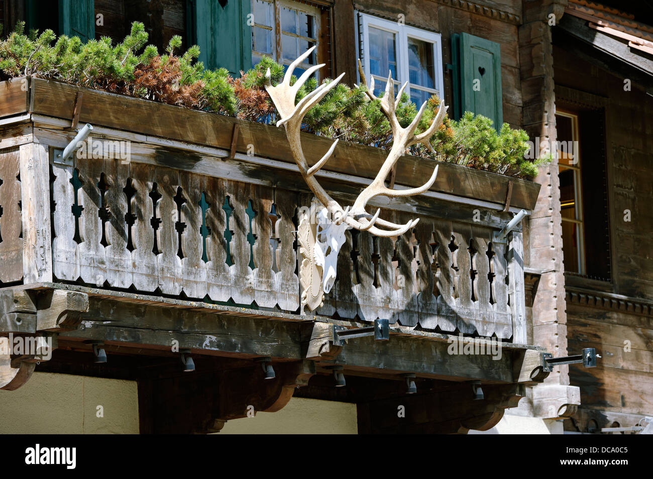Antlers on the railings of a balcony - Stock Image