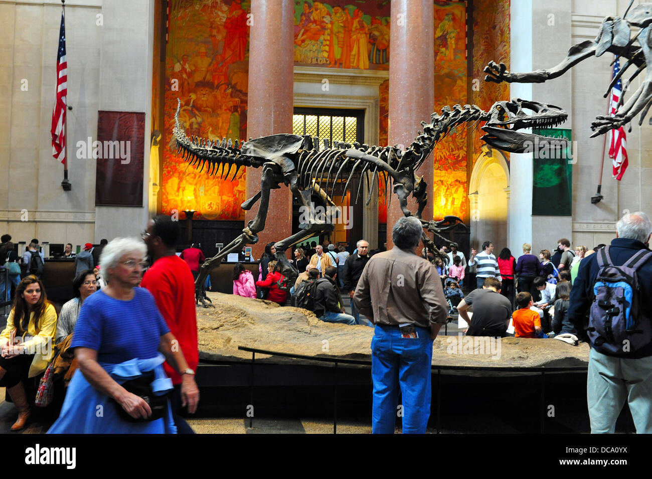 Visitors at the Theodore Roosevelt Rotunda iconic dinosaur exhibit at the museum of natural history in Manhattan - Stock Image
