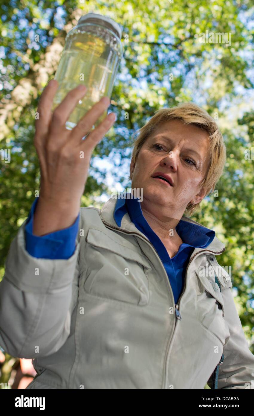 Top Berlin candidate for Alliance 90/The Greens Renate Kuenast looks at a glass with water from a stream in a Spreewald - Stock Image