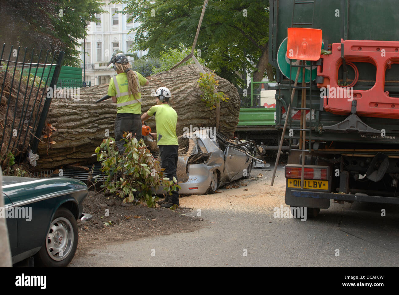Car crushed by falling tree in Colville Square Notting Hill London Stock Photo