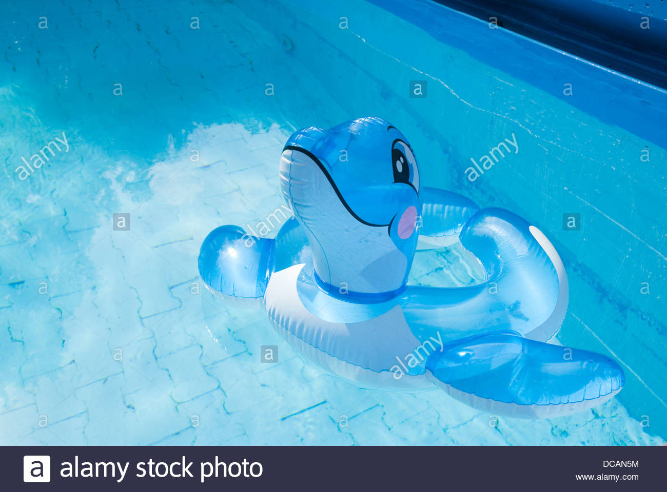 Smiling delphin - Stock Image