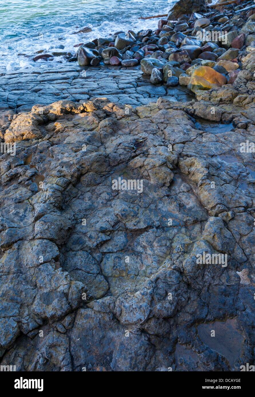 Largest ichnites of sauropod dinosaurs, La Griega Beach, Lastres - Llastres Village, Colunga Council, Asturias, Stock Photo