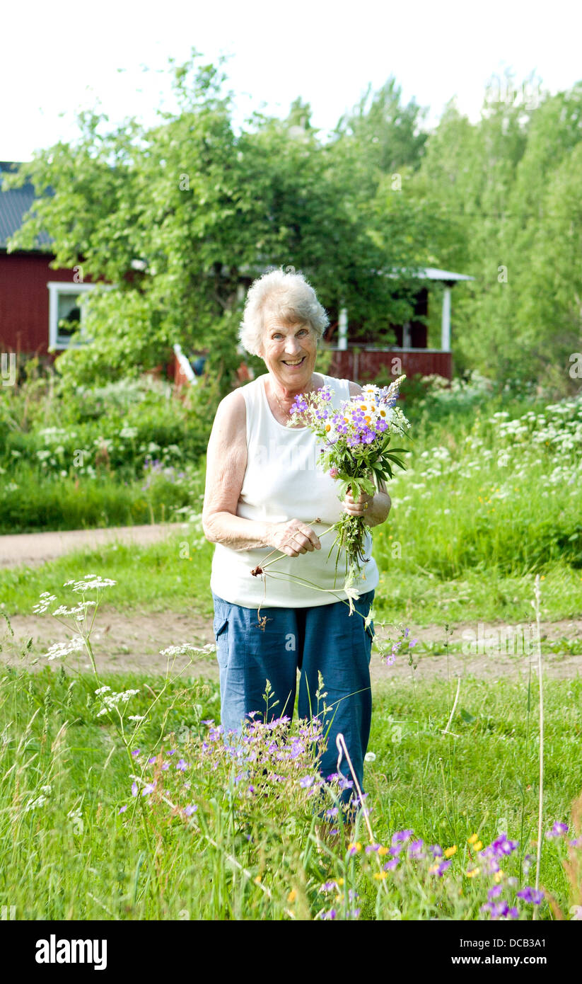 Smiling senior woman picking flowers - Stock Image
