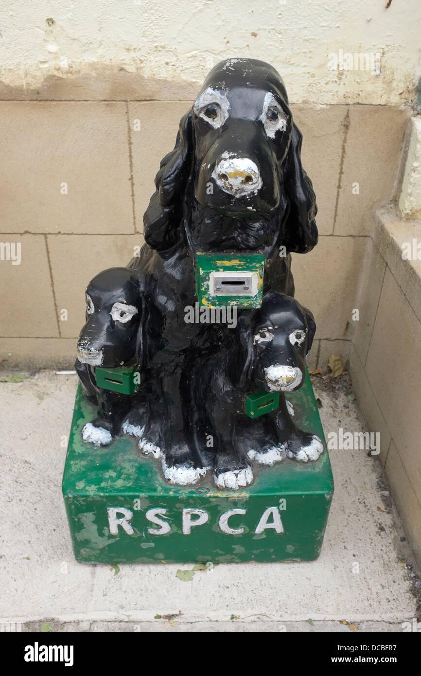 RSPCA Charity Dog Box - Stock Image