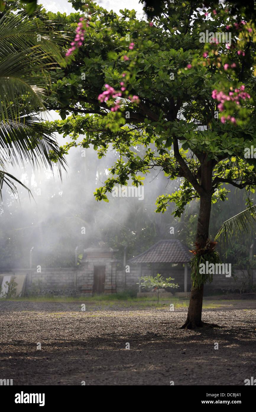 Asian village - Stock Image