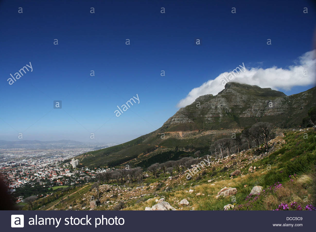 Tafelberg and Kaapstad - Stock Image
