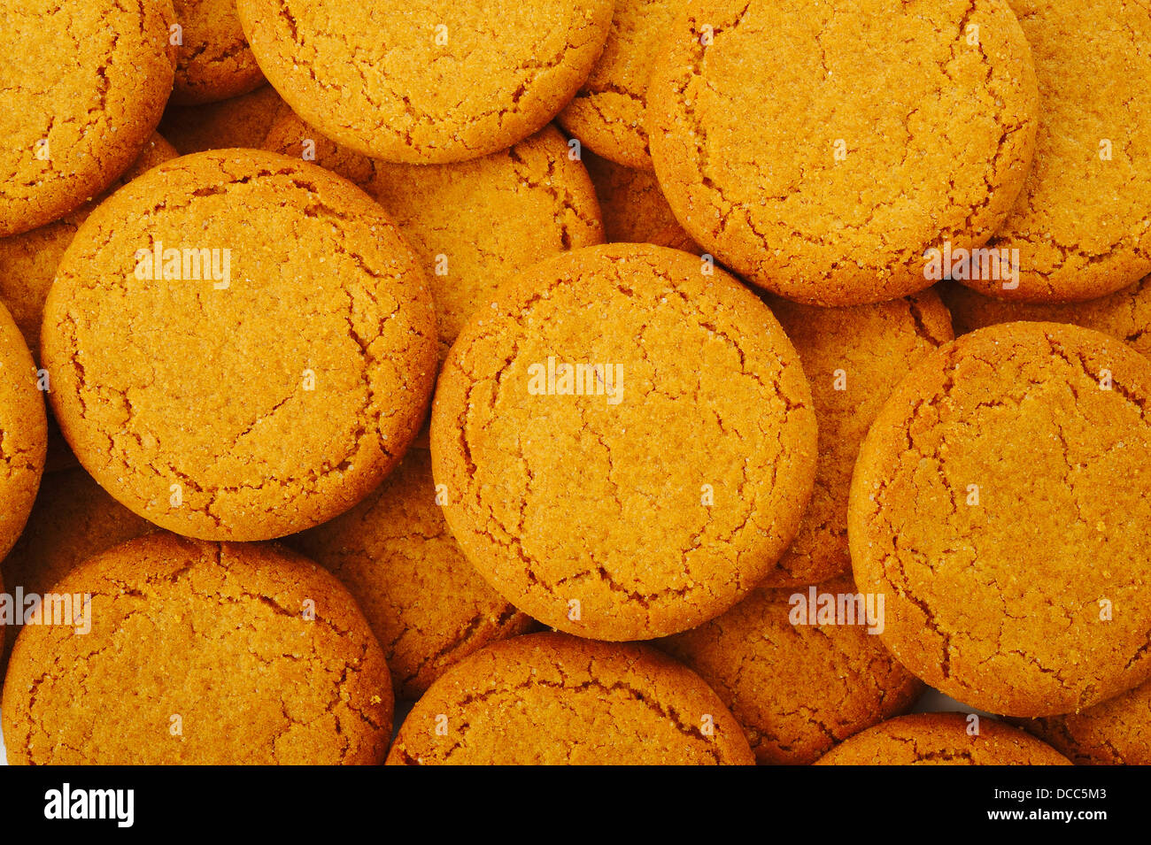 ginger nut biscuts - Stock Image