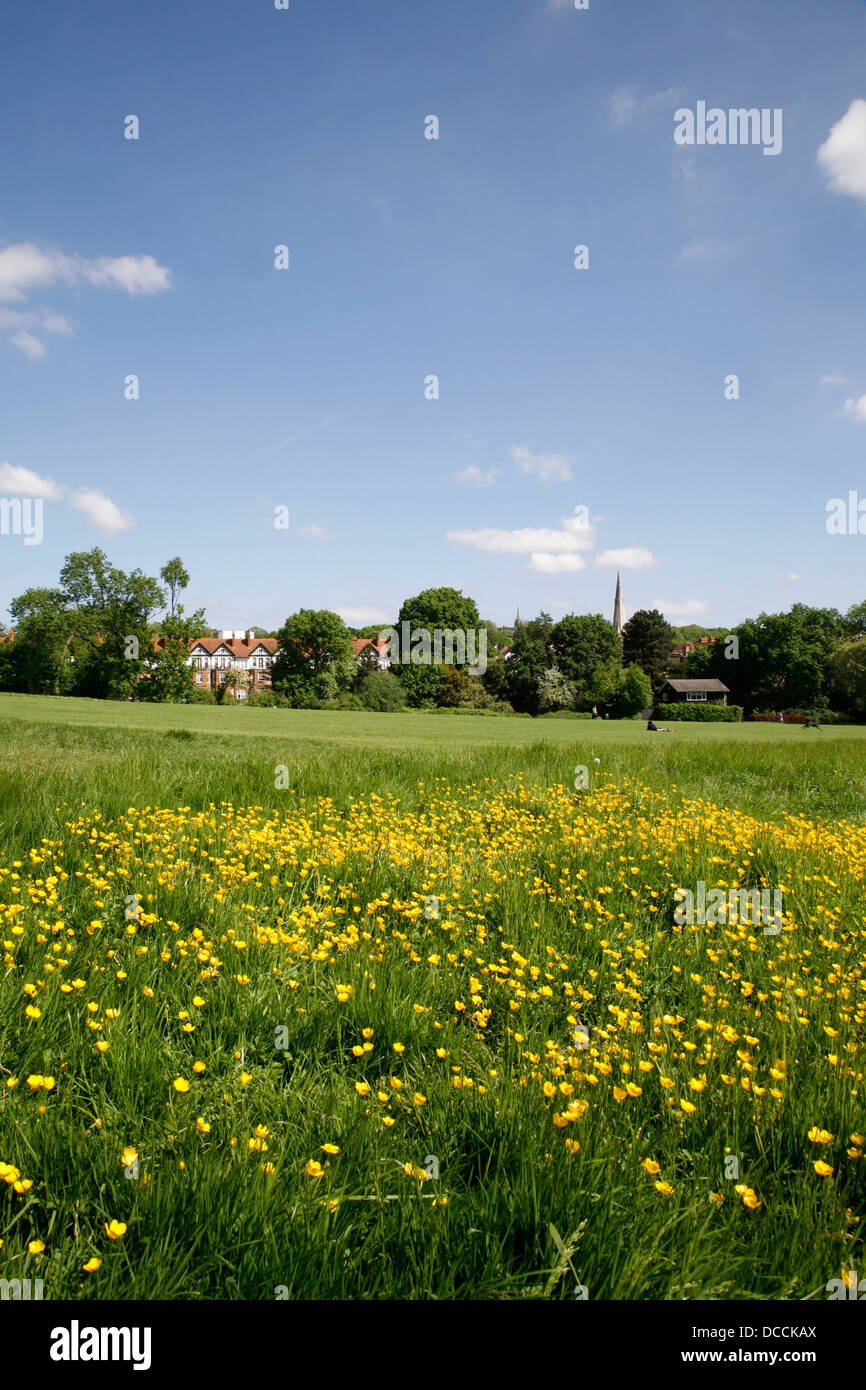 View over the corner of Hampstead Heath to St Anne's church in Dartmouth Park, London, UK - Stock Image
