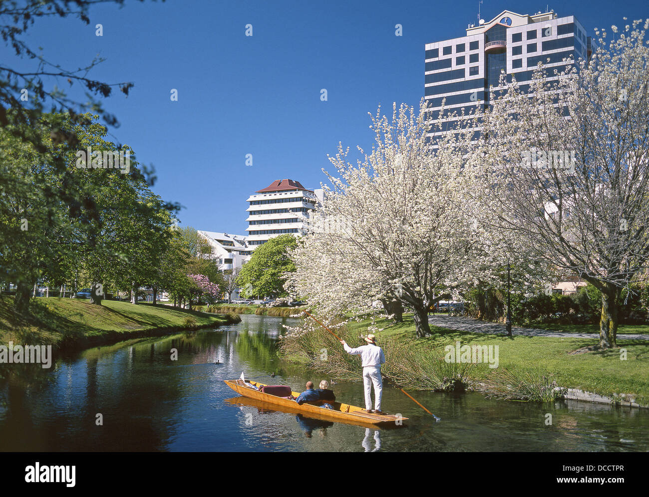 Christchurch News Photo: Punting On The Avon River In Spring Christchurch New