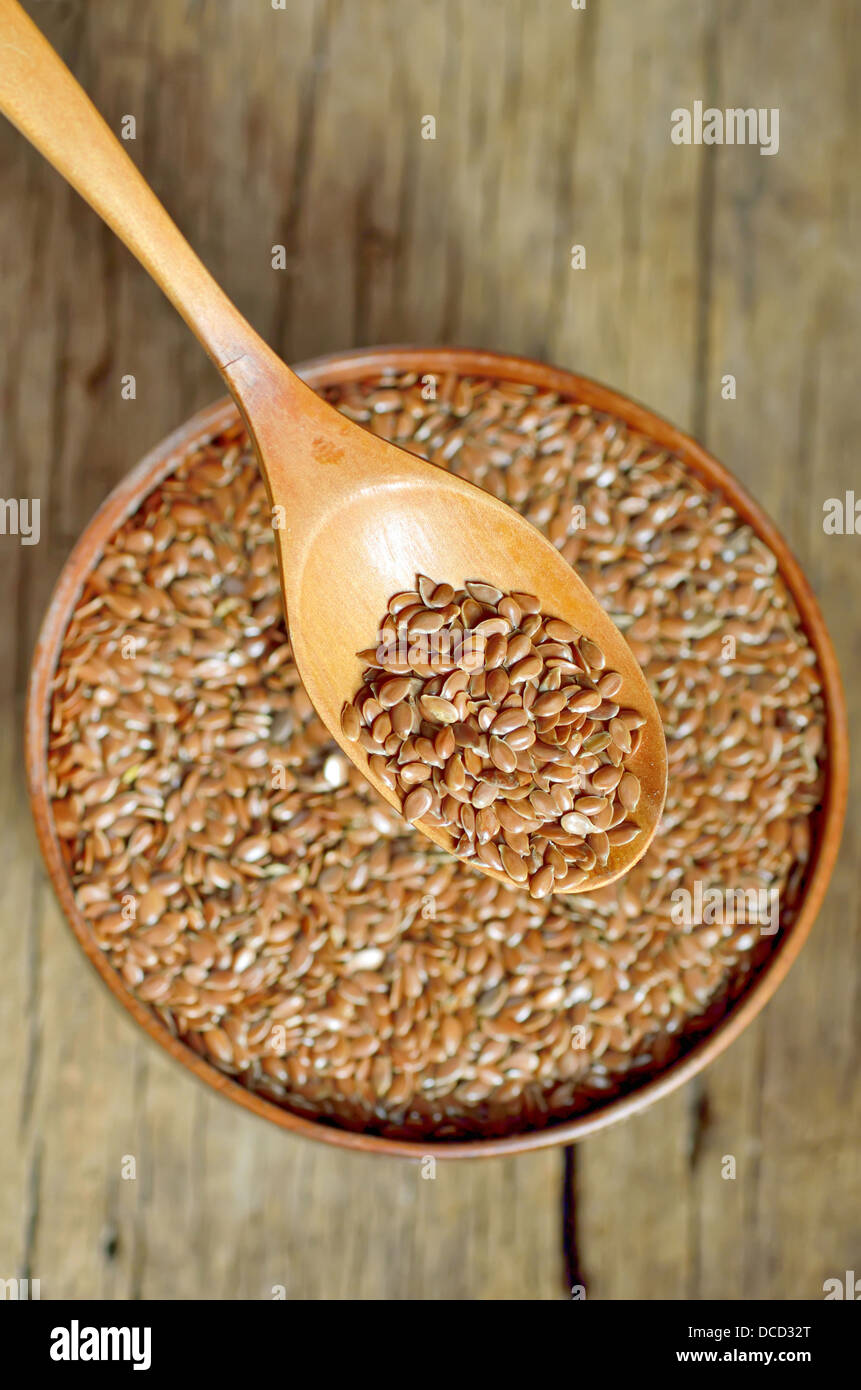 flax seeds shoot on wood in studio - Stock Image