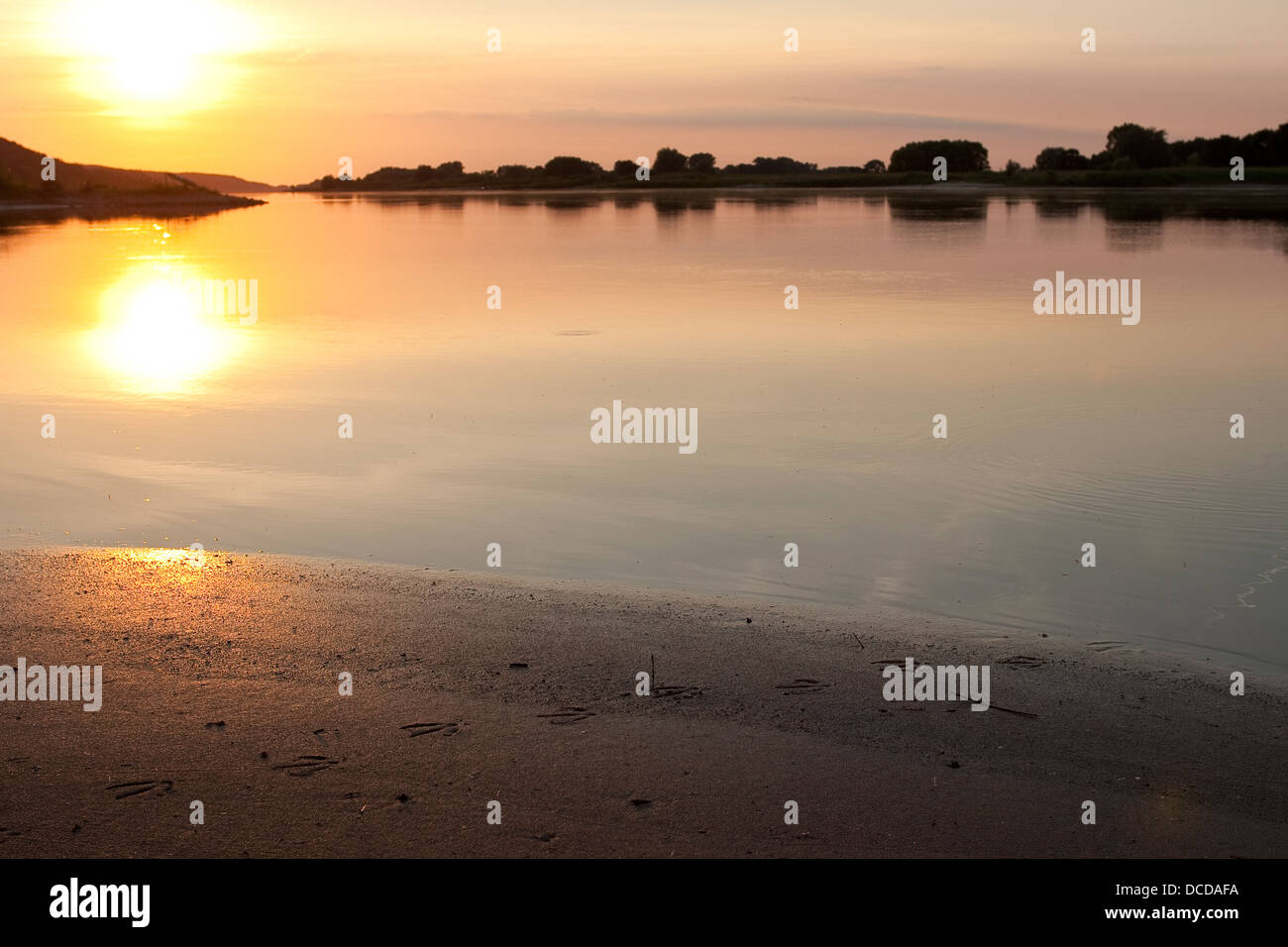 Abendstimmung an der Elbe, Sonnenuntergang, Evening mood on the Elbe, sundown - Stock Image