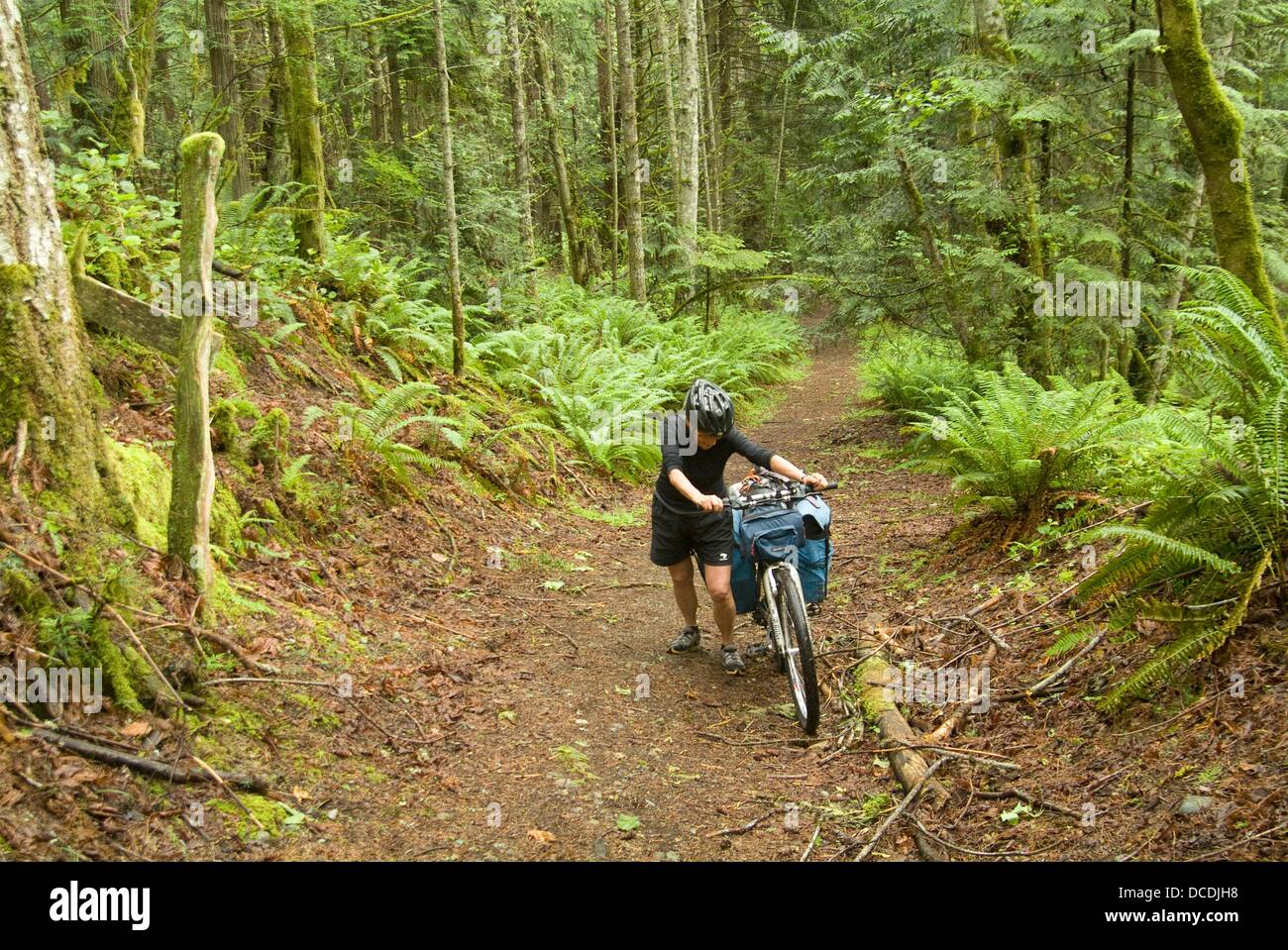 bicyclist on a trail on Galiano Island, Gulf Islands, British Columbia, Canada - Stock Image